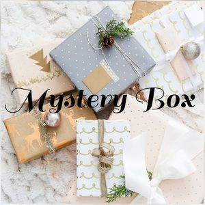 MYSTERY BOX (brandy melville + more!)